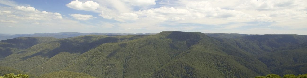 View of Barrington Tops wilderness from Thunderbolts Lookout